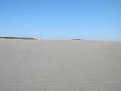 中田島砂丘の画像